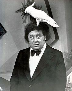 Marty Allen