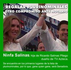Ricardo Salinas Pliego