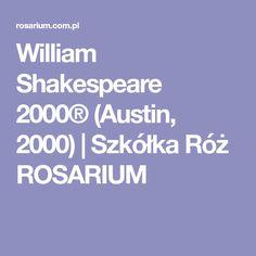 William F. Austin