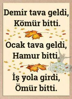 Demet Gul