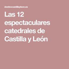Jocas de Leon