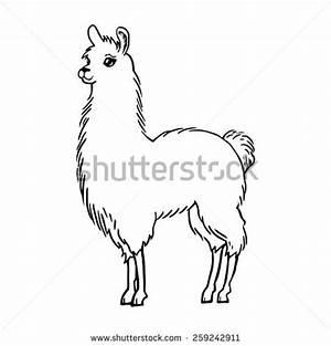 Llama Arts