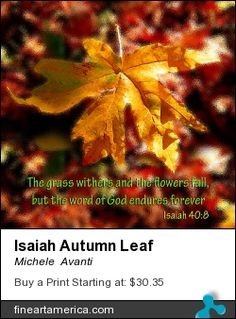 Autumn Withers