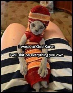 Kermit the Dog