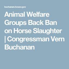 Vern Buchanan