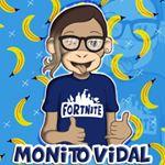 Monito Vidal