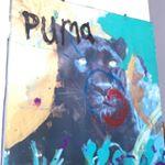 Puma Rose